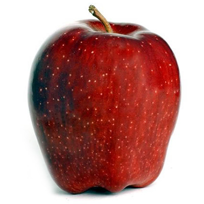Harrold Red Delicious